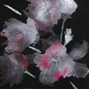 Frosty Flowers Poster