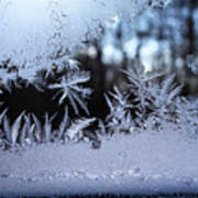 Frosty Morning Window Poster