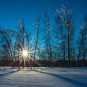 Frozen Trees Under A Winter Sunset Poster