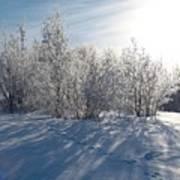 Frozen Views 3 Poster