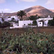 Fuerteventura Iv Poster