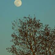 Full Moon At Sunset Poster