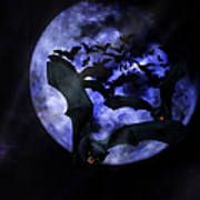 Full Moon Bats Poster