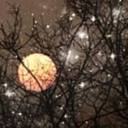 Full Moon Starry Night Poster