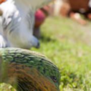 Garden Animals Poster