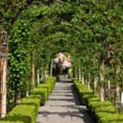 Garden Arbor Path Poster
