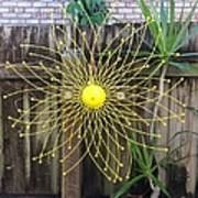 Yellow Sunflower Garden Art Poster