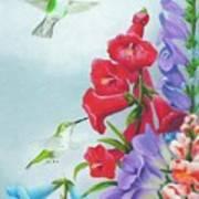 Garden Beauties Poster