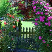 Garden Bench And Trellis Poster