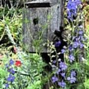 Garden Birdhouse Poster
