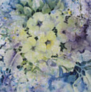 Garden-flowers Poster
