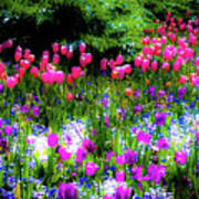 Garden Flowers With Tulips Poster