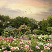 Garden Grace Poster
