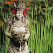 Garden In Bali Poster