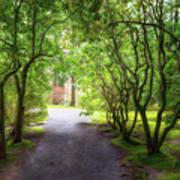 Garden Path In Spring Poster