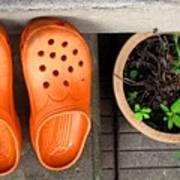 Garden Shoes Poster