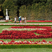 Gardens Of The Schloss  Schonbrunn  Vienna Austria Poster
