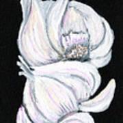 Garlic 2 Poster