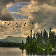 Geese Over Jericho Lake Poster