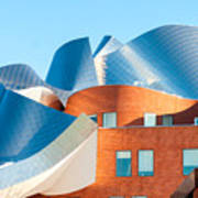 Gehry Architecture Poster