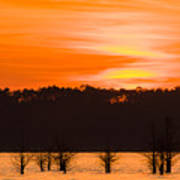 George T. Bagby State Park Sunset Poster