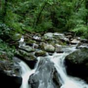 Georgia Mountian Stream Poster