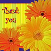 Gerbera Daisy Thank You Card Poster