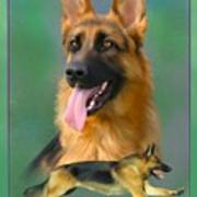 German Shepherd With Name Logo Poster