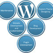 Get Result Oriented Word Press Development Services Poster