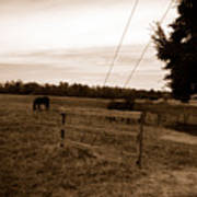 Ghost Horses Of Huckleberry Lane Poster