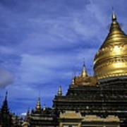 Gilded Stupa Of The Shwezigon Pagoda In Bagan Poster