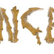 Ginger Ginger Poster