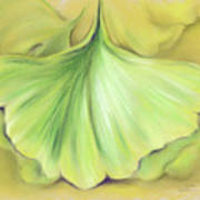 Ginkgo On The Cusp Of Autumn Poster