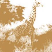 Giraffe 2 Poster