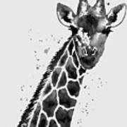 Giraffe In Black And White Poster