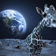 Giraffe On Moon Poster