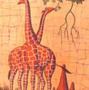 Giraffes Feeding Poster
