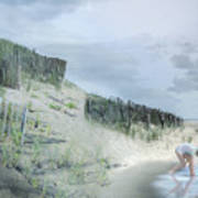 Girl Picking Up Sea Shells Poster