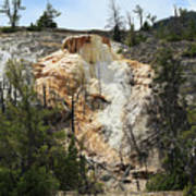 Glen Spring At Mammoth Hot Springs Upper Terraces Poster