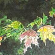 Glistening Fall Poster