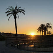 Glorious Sevillian Sunset With Palms Poster