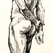 Gluteus Maximus Poster