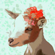 Goat With Flower Poster