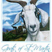 Goats Of St. Maarten- Andre Poster