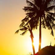 Golden Beach Tropics Poster