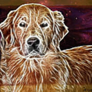 Golden Glowing Retriever Poster