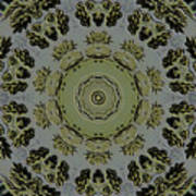 Mandala In Pewter And Gold Poster