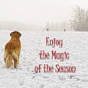 Golden Retriever Dog Magic Of The Season Poster