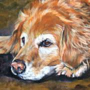 Golden Retriever Senior Poster by Lee Ann Shepard
