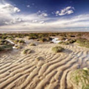 Golden Sand Lines And Seaweed Rocks Of Norfolk Poster